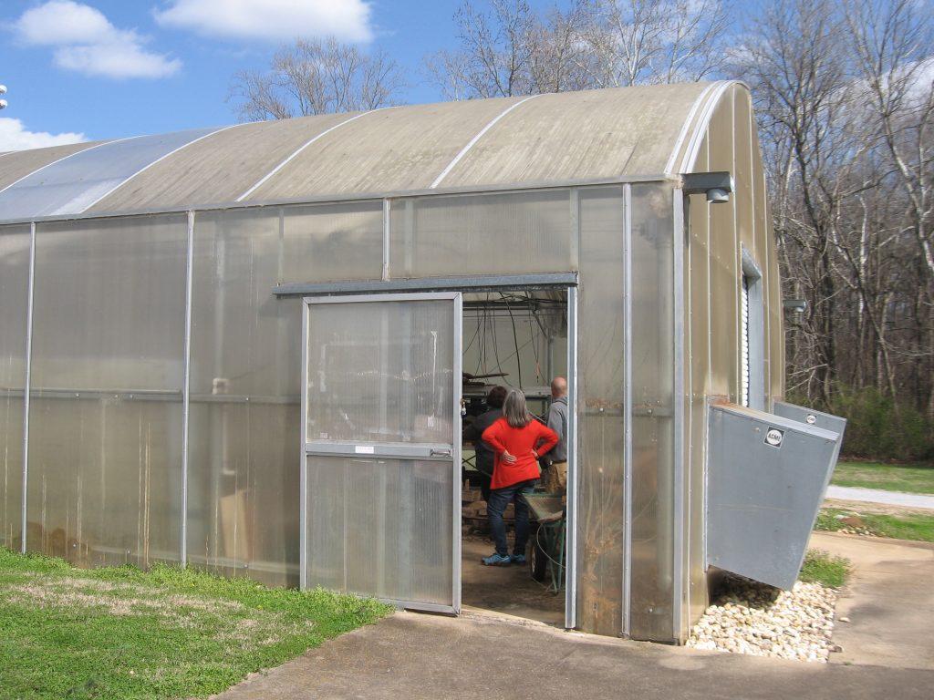 Greenhouse 061
