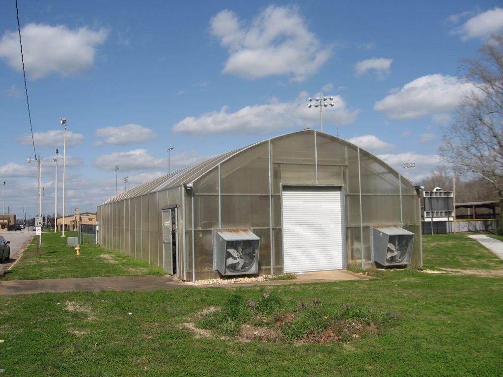 Greenhouse 063