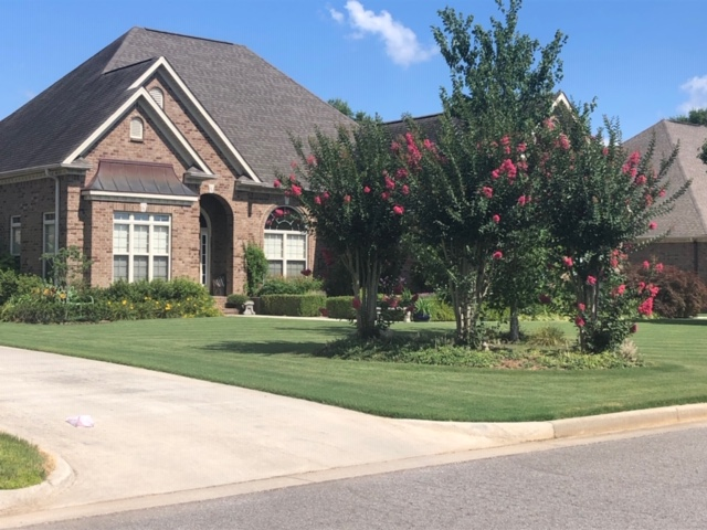 The July Yard of the Month 14872 Wildwood Drive in Athens